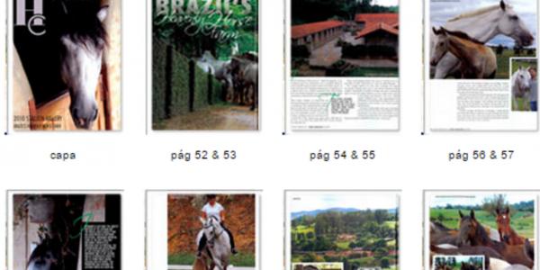 Zepelim Interagro, cover of Horse Connection Magazine