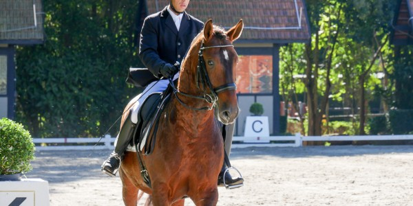 ABPSL´s Dressage Cup/38th International Lusitano Show