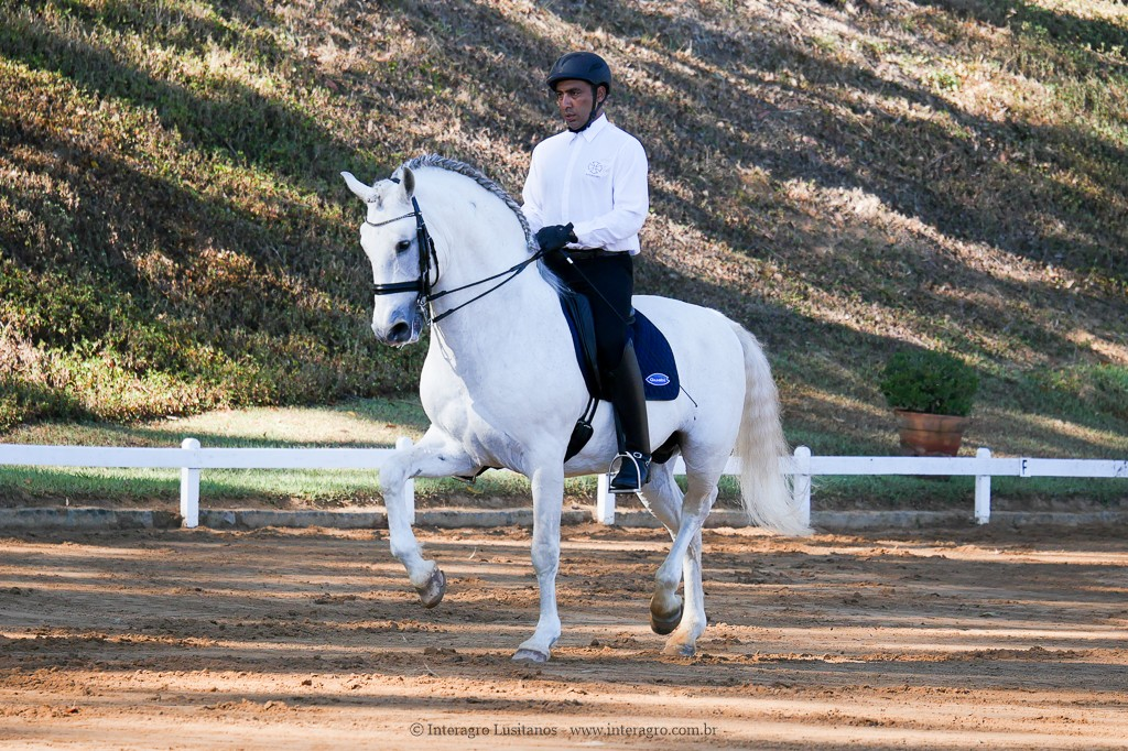 Johnny Miranda & Zepelim Interagro, 1st place at Medium Tour/Inter A at the 2nd phase of 2019 Interagro Dressage Ranking/Interagro Lusitanos