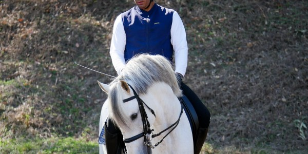 Interagro Lusitanos' Dressage Rankings Highlight Young Talent on the Rise