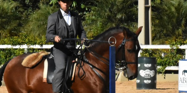 3rd phase of 2017 Brazilian Working Equitation Championship – results