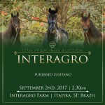 17th Interagro Yearlings Auction