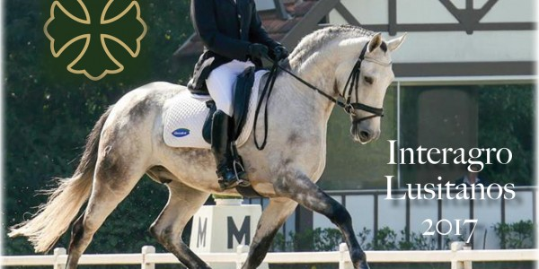 Interagro's 2nd Dressage Ranking Highlights Developing Talent