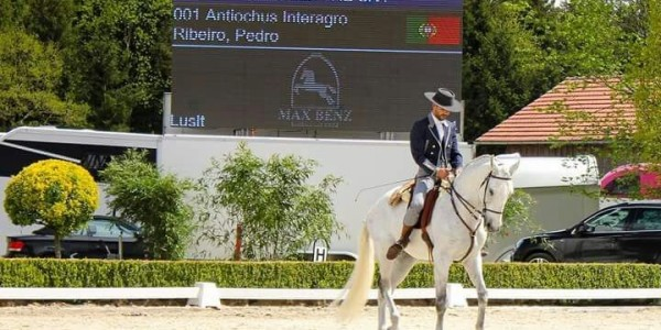 Brazil to Germany: Antiochus Interagro Takes Working Equitation Talent to Europe