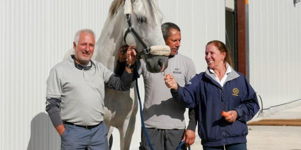300 Horses, 3 Companies, a Distinguished Global Partnership: Interagro Lusitanos, GTC Brazil, and Lazcar International