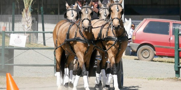 1st phase of 2018 CBH Driving Ranking & Derby
