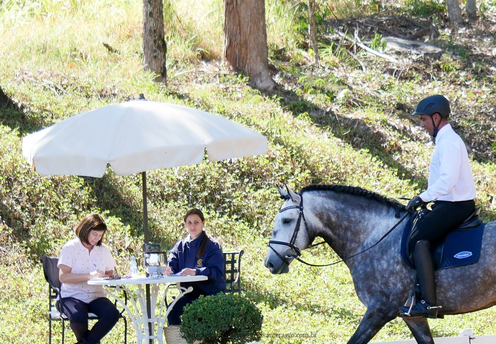 Lord Interagro & Johnny Miranda, 1st place Training Level at the 2nd phase of 2019 Interagro Dressage Ranking/Interagro Lusitanos