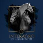 18th Interagro Yearlings Auction