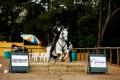 Edmar Brito e Incrivel Interagro – Cavalos Novos B