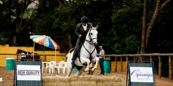 Results of Interagro horses at 2nd phase of 2019 Sao Paulo Working Equitation Championship