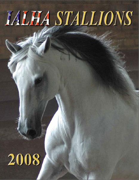 Noblíssimo Interagro is the Cover of 2008 IALHA Stallion Directory