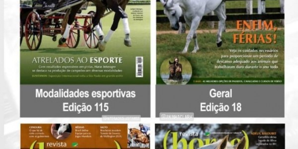 """The finalists of the """"Best Covers Contest"""" of Horse Magazine in Brazil"""
