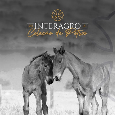 2021: Interagro Yearlings Collection